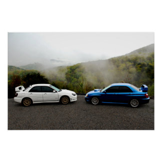 Two Subarus in the Smoky Mountains Poster