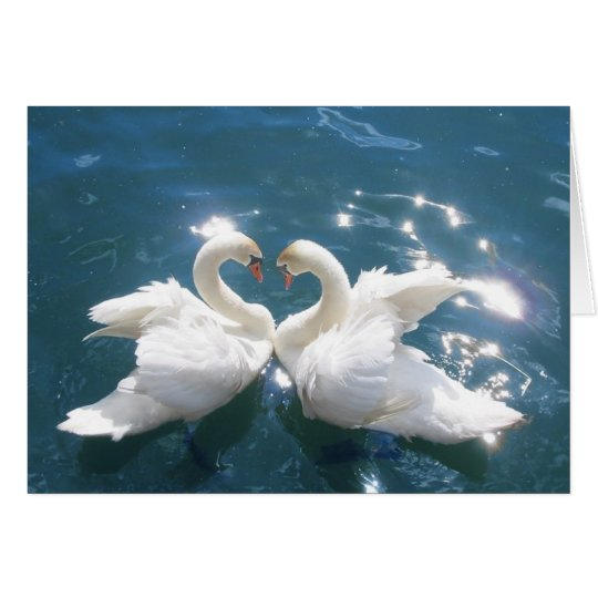 Two Swan Lovers note card