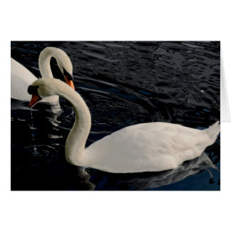 Two Swans Card