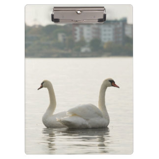Two swans clipboard