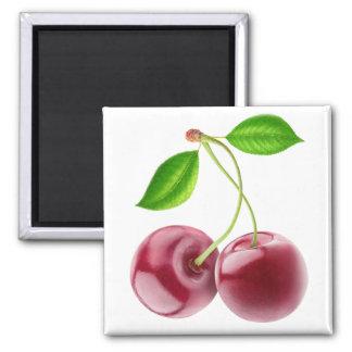 Two sweet cherries magnet
