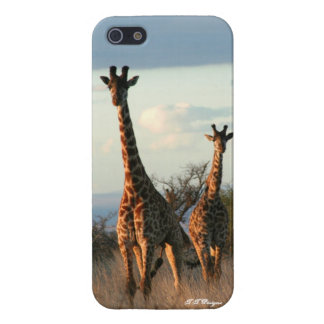 Two Twiga iPhone 5 Covers
