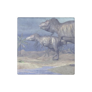 Two tyrannosaurus dinosaurs stone magnets