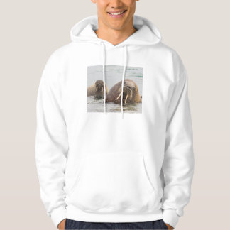Two walruses in water, Norway Hoodie