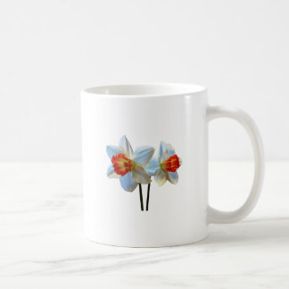 Two White And Orange Daffodils Coffee Mug