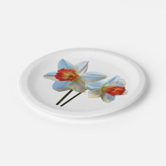Two White And Orange Daffodils Paper Plate