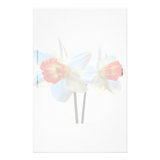 Two White And Orange Daffodils Stationery
