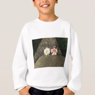 Two white daisies lying on the stone at sunset sweatshirt