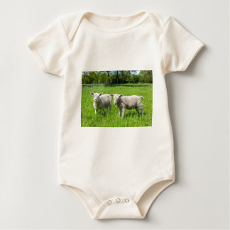 Two white dutch sheep in green spring meadow baby bodysuit