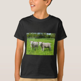 Two white dutch sheep in green spring meadow T-Shirt