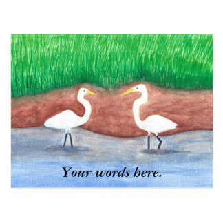 Two White Egrets Grassy Shore Postcards Template