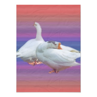 two white geese in fancy  background personalized invitations