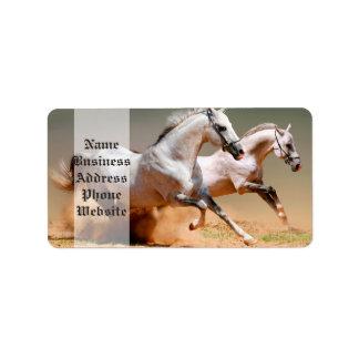 two white horses running