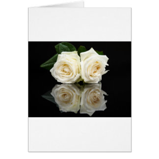 Two white roses with mirror image on black card