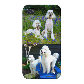 Two White Standard Poodles iPhone 4/4S Case
