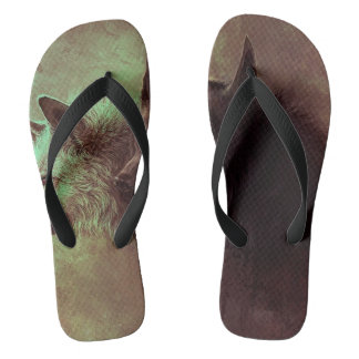 two wolves - painting wolf flip flops
