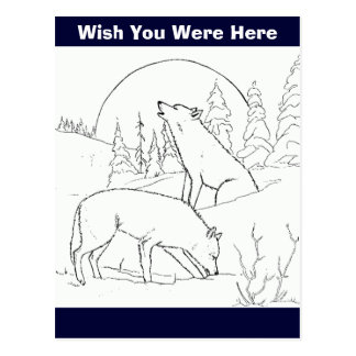 Two Wolves Postcards