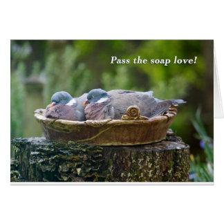 Two wood pigeons sharing a birdbath. card