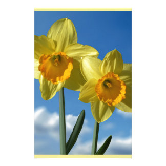 Two yellow Daffodils 2.2 Stationery