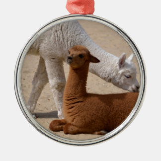 Two young alpacas Silver-Colored round ornament