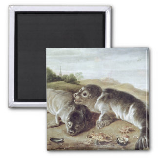 Two Young Seals on the Shore, c.1650 Fridge Magnets