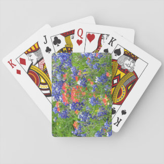 TX bluebonnets playing cards