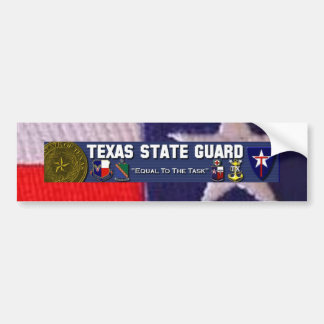 TX flag square, TXSG License plt full Bumper Sticker