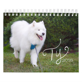 Ty 2018 calendar