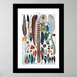 Types plumes de De. Larousse versent tous - Poster
