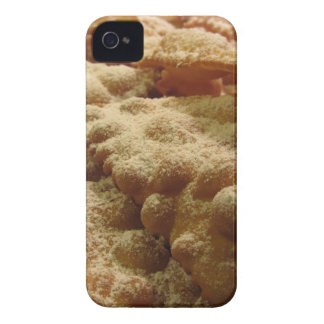 Typical italian carnival sweets iPhone 4 covers