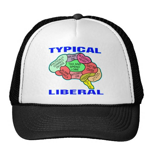 Typical Liberal Socialist Brain Hat