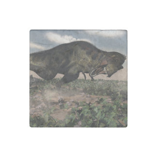 Tyrannosaurus rex roaring at a triceratops stone magnets