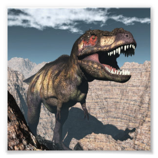 Tyrannosaurus rex roaring in a canyon photo