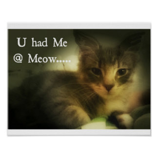 U Had Me @ Meow Poster