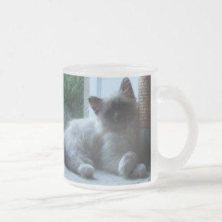 U' Onyx Cardiff Baby Blue 018 Frosted Glass Coffee Mug