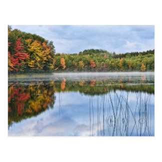 U. P. Michigan Fall Reflections Postcard