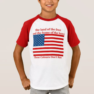 U S A FLAG the land of the free T-Shirt