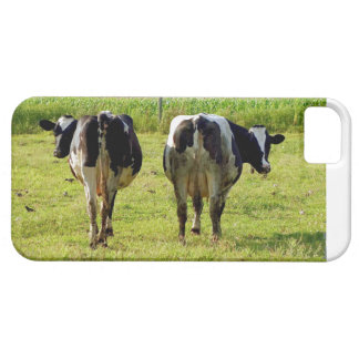 Udder Viewpoints iPhone 5/5S Cases