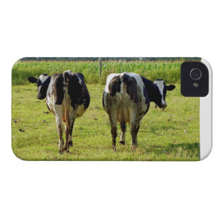 Udder Viewpoints Case-Mate iPhone 4 Cases