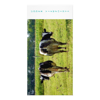 Udder Viewpoints Photo Card Template