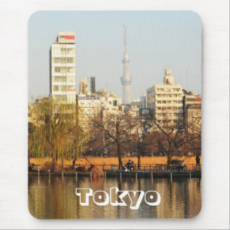 Ueno Park in Tokyo, Japan Mouse Pad