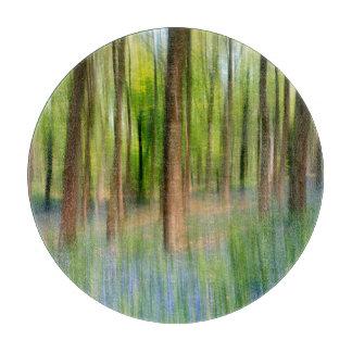 UK England | Bluebell Oak Woodland in Springtime Boards