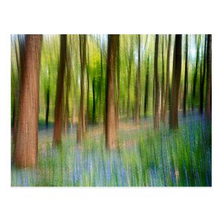 UK England | Bluebell Oak Woodland in Springtime Postcard