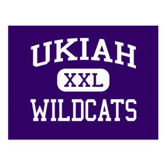 Ukiah - Wildcats - High School - Ukiah California Postcard