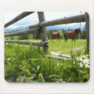 Ukraine: in the Carpathian Mountains Mouse Pad