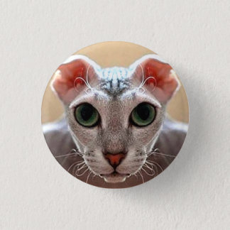 Ukrainian Levkoy Cat Small Badge 1 Inch Round Button