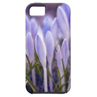 Ultra violet crocuses case for the iPhone 5