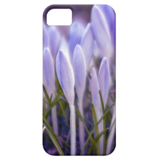 Ultra violet crocuses iPhone 5 cover