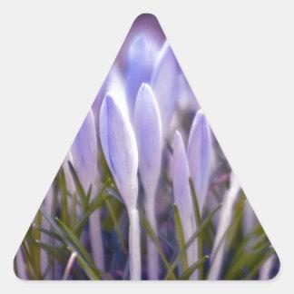 Ultra violet crocuses triangle sticker