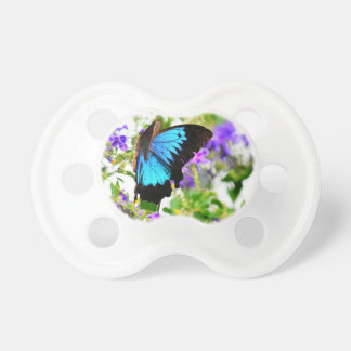 ULYSSES BUTTERFLY QUEENSLAND AUSTRALIA PACIFIER